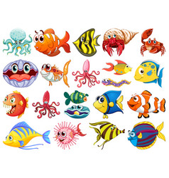 cute animal sea life in cartoon character vector image