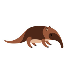 Cute cartoon anteater isolated on white background vector