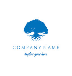modern blue oak banyan tree roots logo design vector image
