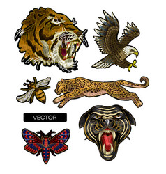 tiger eagle leopard and panther embroidery vector image
