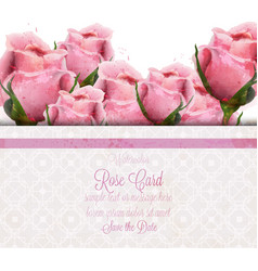 Watercolor pink roses card wedding vector