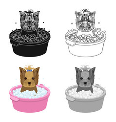 Bathing pet puppy in a bowl dogpetdog care vector