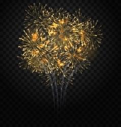 Festive Firework Bursting Holiday Background vector image