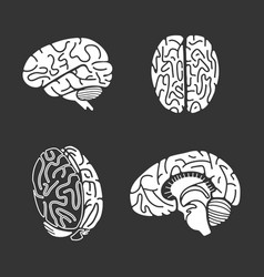 Brain icon set simple style vector