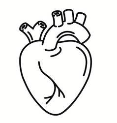 human heart organ outline icon linear style sign vector image