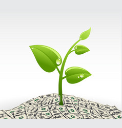 Plant and dollars vector