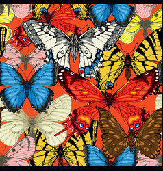 seamless pattern with bright hand drawn butterfly vector image