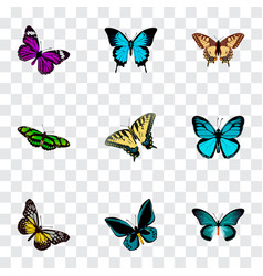 set of beauty realistic symbols with papilio vector image