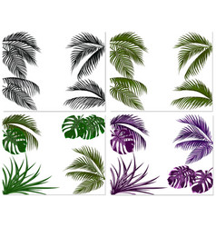 Sets of colorful leaves of tropical palm trees vector