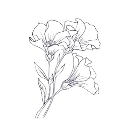 Hand drawn with flowers vector