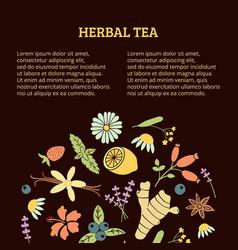Herbal tea article vector