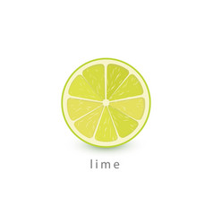 lime simple icon vegan logo template minimalism vector image