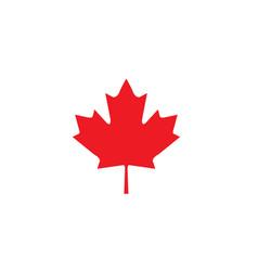 Mafle leaf symbol canada national vector