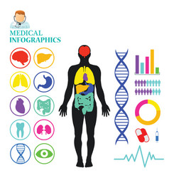 medical info graphic vector image