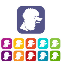 poodle dog icons set vector image