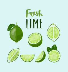set of whole and sliced limes with lettering abaw vector image