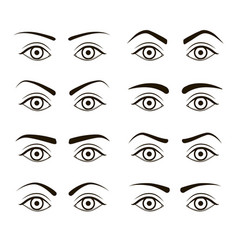 different type woman black eyebrows set vector image