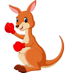 cute kangaroo boxing vector image