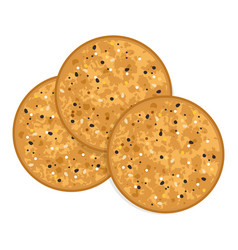 Baked round cracker chips vector