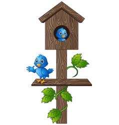 cartoon blue bird in wooden mailbox vector image