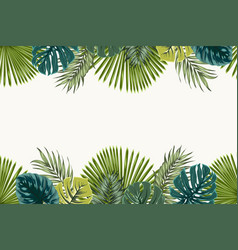 Exotic tropical leaves top bottom border frame vector
