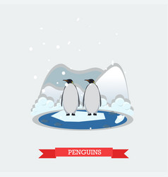 funny penguins on arctic vector image