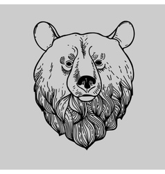 Graphic Bear Head Logo vector