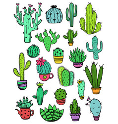 Set of colorful cactus icons vector