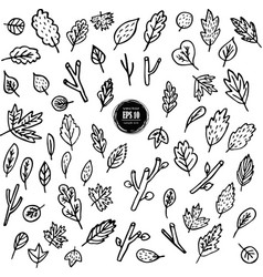 set of leaves branches plants hand drawn vector image
