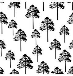 pine trees seamless vector image vector image