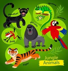 wild Jungle animals vector image