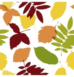 Autumn leaves seamless pattern for your design vector image