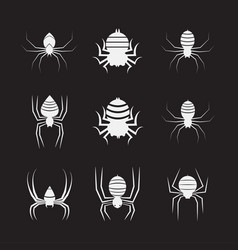 group spiders on black background insect vector image