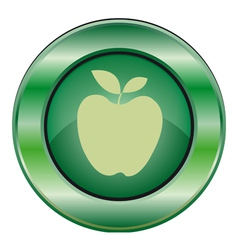 icon green apple vector image