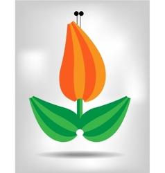 Orange isolated flower vector image