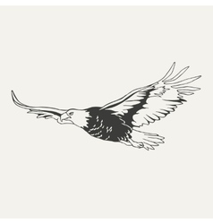 eagle Black and white style vector image vector image