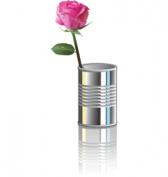 rose in can vector image vector image