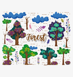 beautifil forest elements vector image