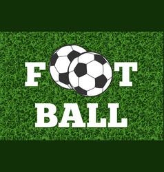 Football and ball green grass field vector