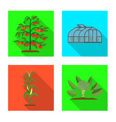 greenhouse and plant symbol vector image