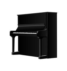 Musical instrument vector