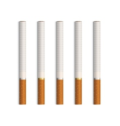 Set cigarettes isolated on white vector