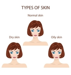 Types of skin Oily normal and dry vector
