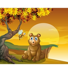 A brown bear and a bee near the cliff vector image vector image