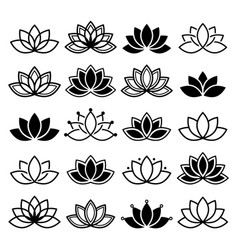 Lotus flower design set yoga collection vector