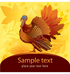 Decorative card with turkey vector image vector image