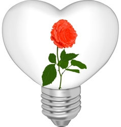 Bulb in the form of heart and in it a flower vector image vector image