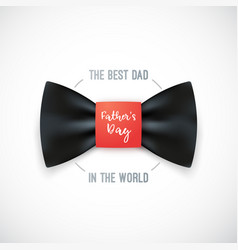 Happy fathers day design for greeting cards vector