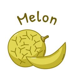 Isolated melon icon vector