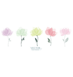 Set cute floral collection vector